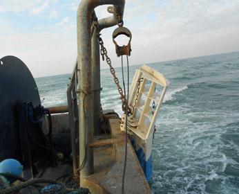 Hercules Semi-Pelagic Trawl Doors - SRL Cosmos